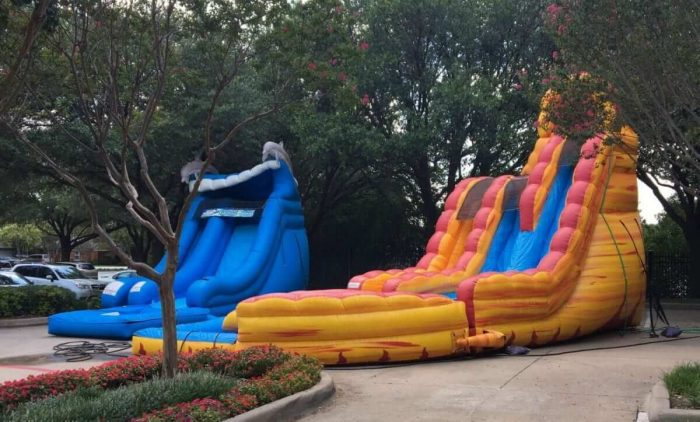 DOLPHIN WATER SLIDE FOR RENT 1